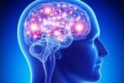 فرآیند شکل گیری عادت (چگونه عادت در مغز شکل می گیرد)