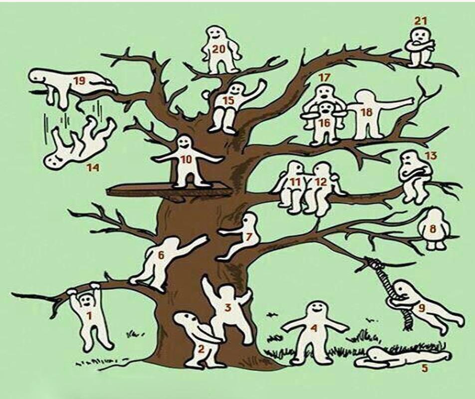 تست درخت blob